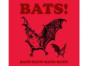 Woot Shirt, Bats!